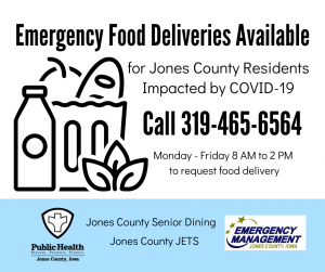 Emergency Food Delivery Flyer